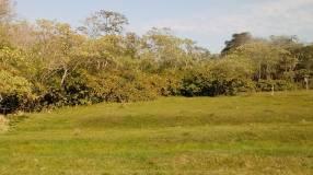 Quinta en Areguá Ruta 1 Km 19